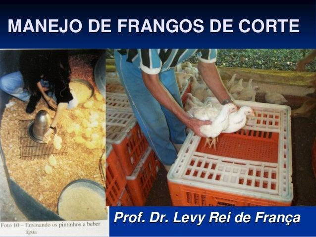 MANEJO DE FRANGOS DE CORTE Prof. Dr. Levy Rei de França