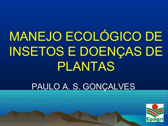 MANEJO ECOLÓGICO DE INSETOS E DOENÇAS DE PLANTAS PAULO A. S. GONÇALVES