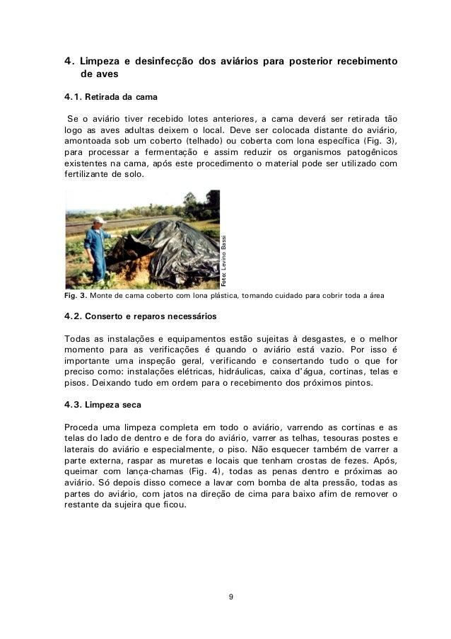Frango de corte pdf converter
