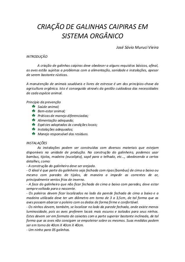 CRIAÇÃO DE GALINHAS CAIPIRAS EM SISTEMA ORGÂNICO José Sávio Muruci Vieira INTRODUÇÃO A criação de galinhas caipiras deve o...