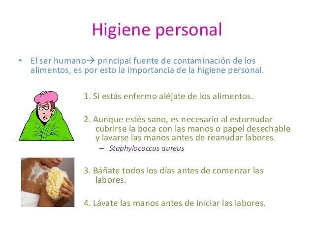 Manejo higi nico de los alimentos 2010 - Fuentes de contaminacion de los alimentos ...