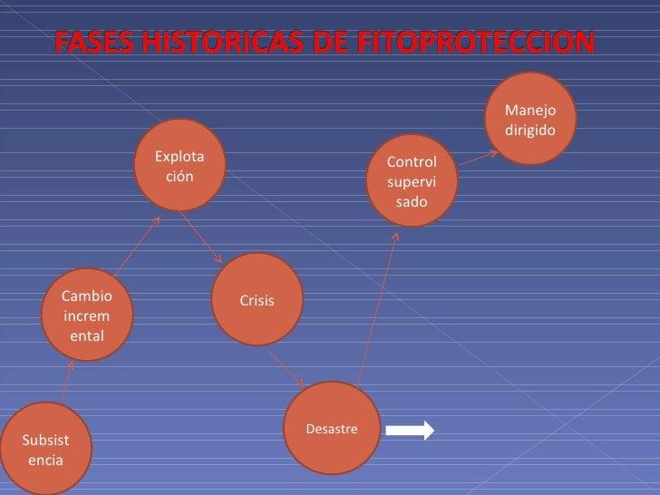 Subsistencia Explotación Crisis Desastre Control supervisado Manejo dirigido Cambio incremental