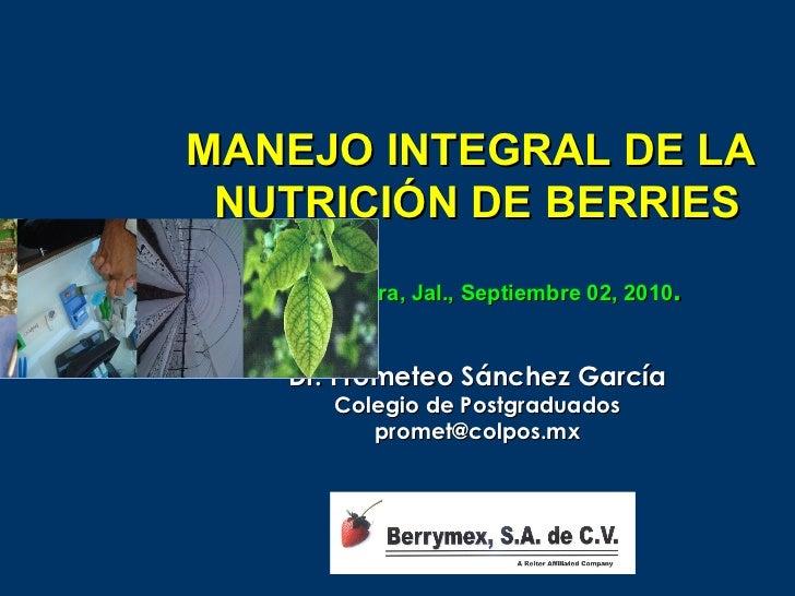 MANEJO INTEGRAL DE LA NUTRICIÓN DE BERRIES   Guadalajara, Jal., Septiembre 02, 2010.    Dr. Prometeo Sánchez García       ...