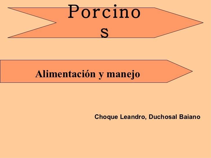Choque Leandro, Duchosal Baiano Porcinos Alimentación y manejo