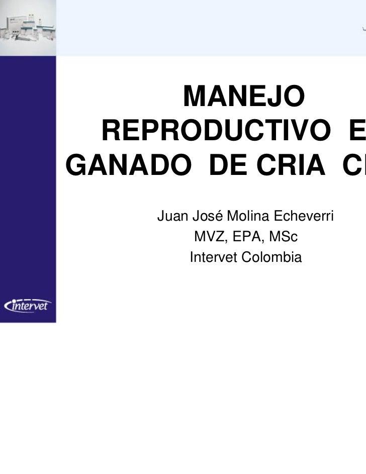 MANEJO  REPRODUCTIVO ENGANADO DE CRIA CEBU    Juan José Molina Echeverri         MVZ, EPA, MSc        Intervet Colombia