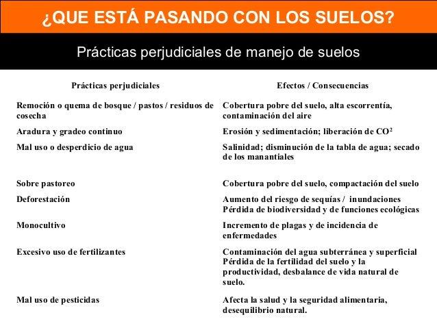 Manejo sustentable de suelos con agricultura de conservación Slide 2