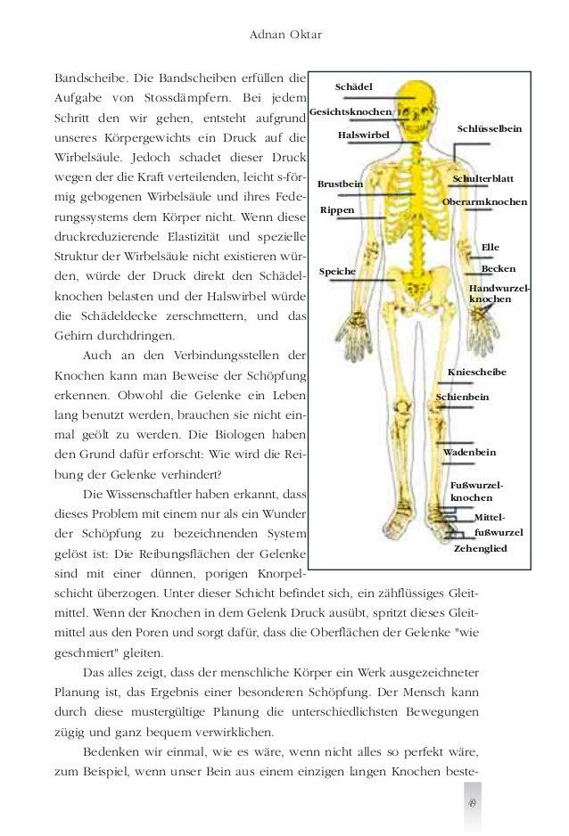 Groß Anatomie Der Gesichtsknochen Galerie - Anatomie Ideen - finotti ...
