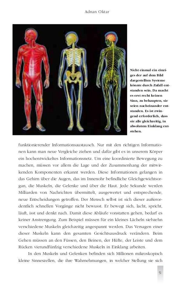 Tolle Dargestellten Menschliche Anatomie Zeitgenössisch - Anatomie ...