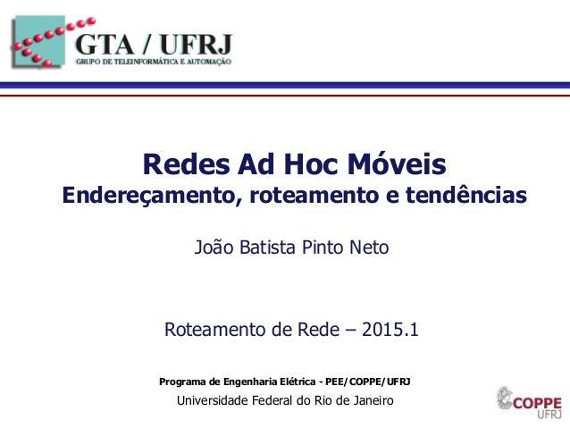 1 Programa de Engenharia Elétrica - PEE/COPPE/UFRJ Universidade Federal do Rio de Janeiro Redes Ad Hoc Móveis Endereçament...