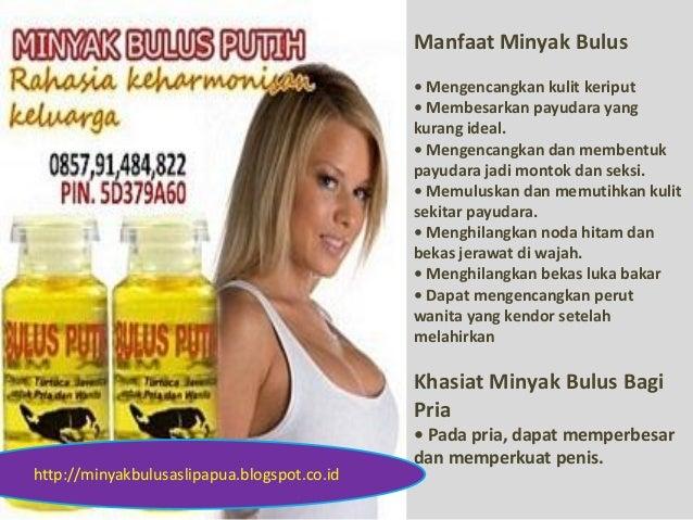 Manfaat Minyak Bulus • Mengencangkan kulit keriput • Membesarkan payudara yang kurang ideal. • Mengencangkan dan membentuk...