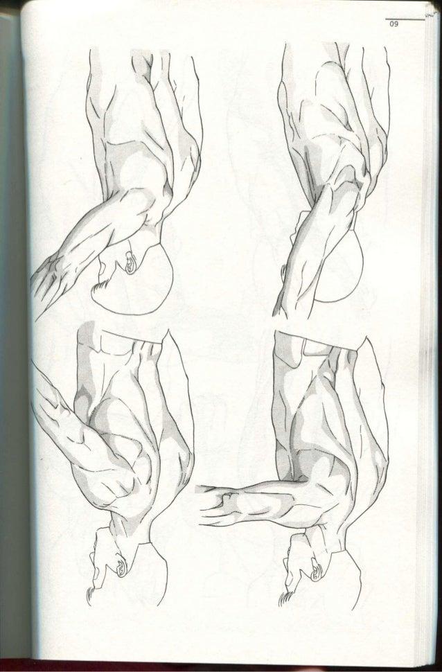 Cómo Dibujar MANGA, El Cuerpo Humano. (Norma Editorial