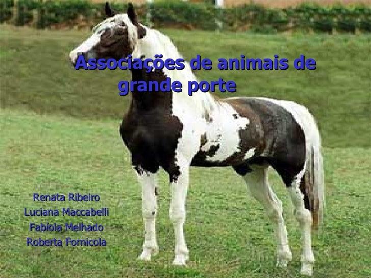 Renata Ribeiro Luciana Maccabelli Fabíola Melhado Roberta Fornicola Associações de animais de grande porte