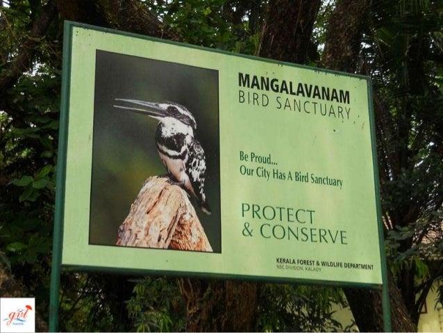 Mangalavanam Bird Sanctuary Slide 2