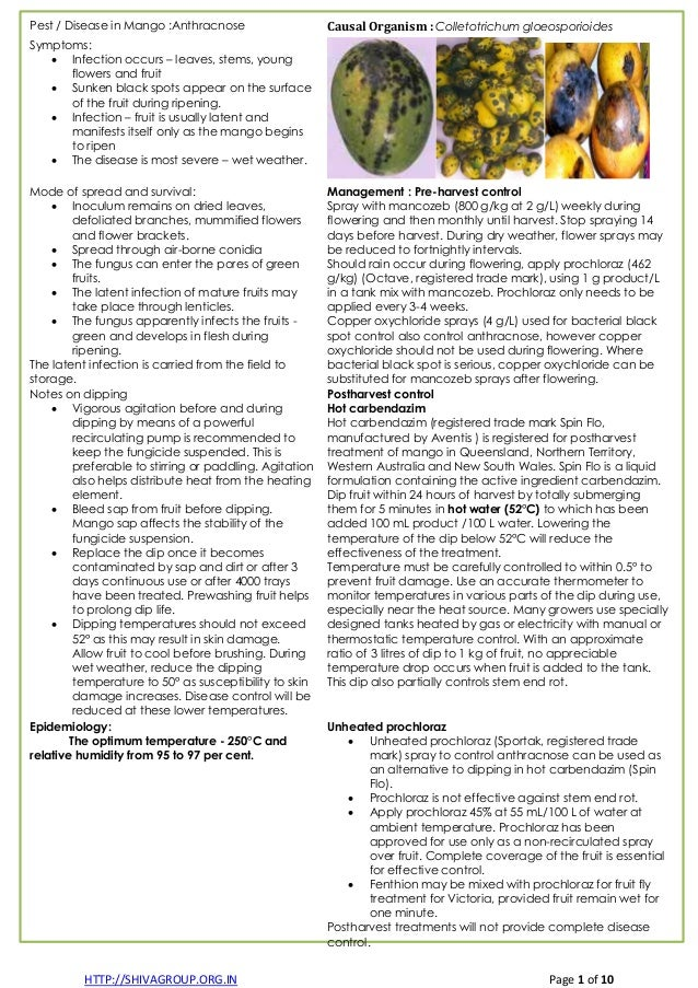 HTTP://SHIVAGROUP.ORG.IN Page 1 of 10 Pest / Disease in Mango :Anthracnose Causal Organism : Colletotrichum gloeosporioide...