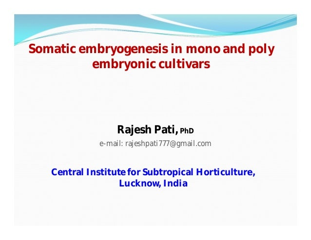 Somatic embryogenesis in mono and poly embryonic cultivars Central Institute for Subtropical Horticulture, Lucknow, India ...