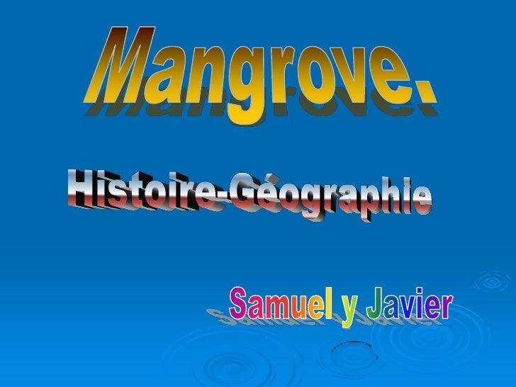 Mangrove                                                 100                                                   1300       ...