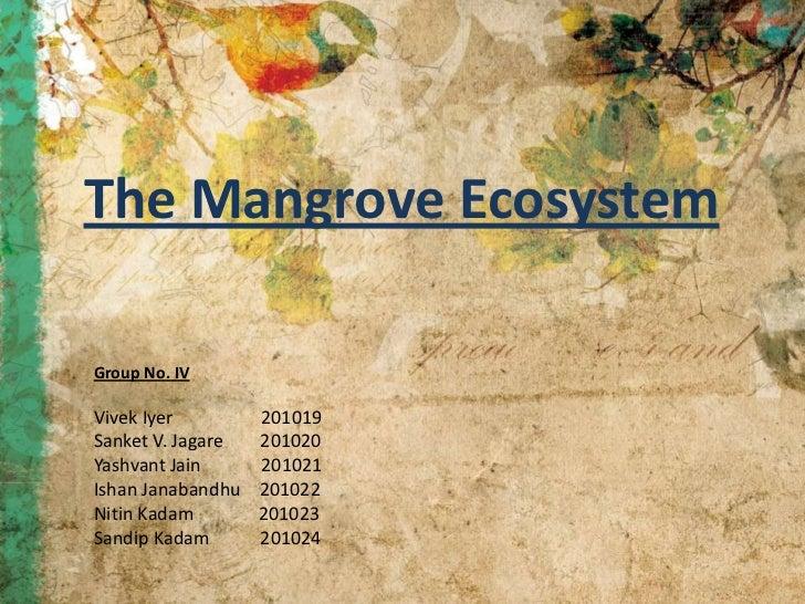 The Mangrove EcosystemGroup No. IVVivek Iyer         201019Sanket V. Jagare   201020Yashvant Jain      201021Ishan Janaban...