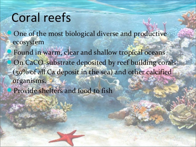 Mangroves and coral reefs
