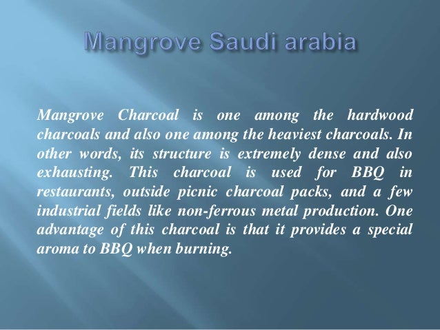 Mangrove saudi arabia - saudicharcoal com