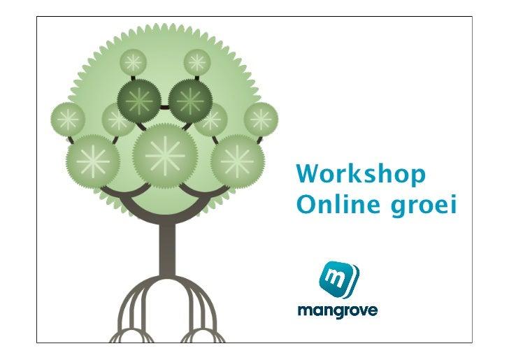 WorkshopOnline groei