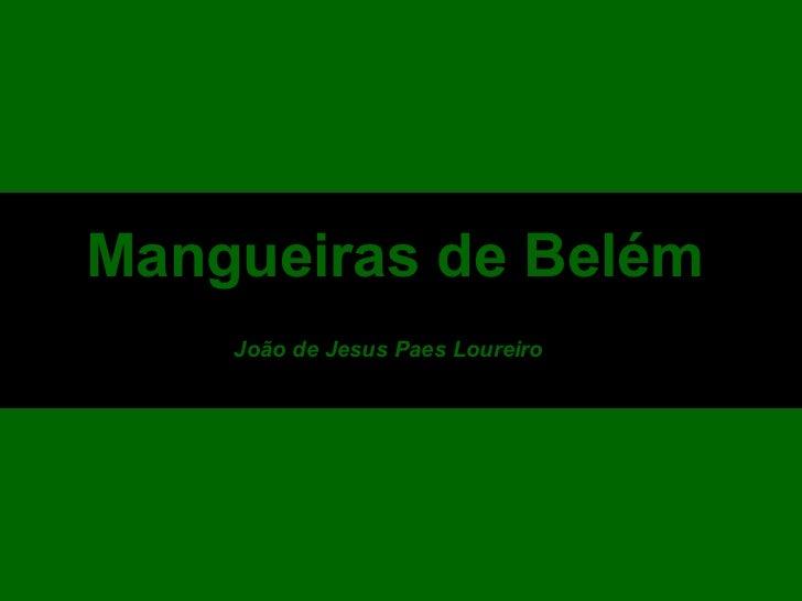 Mangueiras de Belém João de Jesus Paes Loureiro