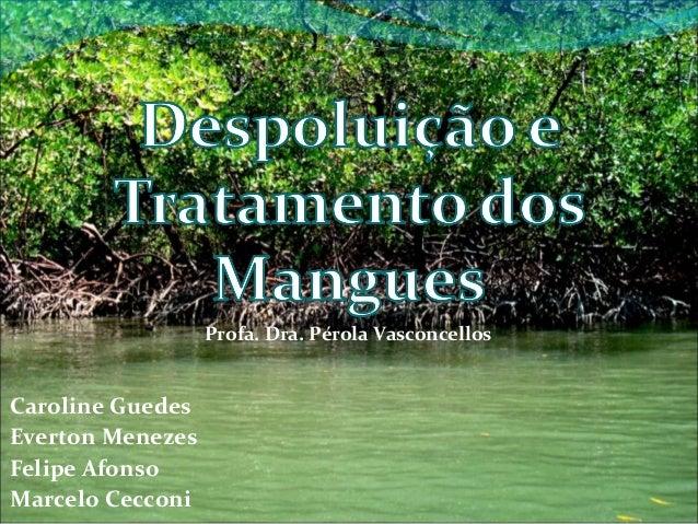Profa. Dra. Pérola Vasconcellos  Caroline Guedes Everton Menezes Felipe Afonso Marcelo Cecconi