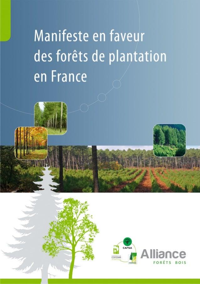 Sommaire      p.3    Qu'est ce qu'une forêt de plantation ?      p.4    La forêt de plantation en danger en France ?      ...
