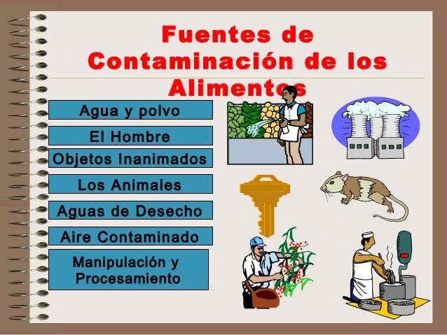 Manipulaci n de alimentos - Fuentes de contaminacion de los alimentos ...