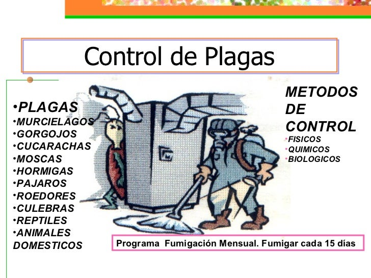 Manipulacion higienica de alimentos for Control de plagas badajoz