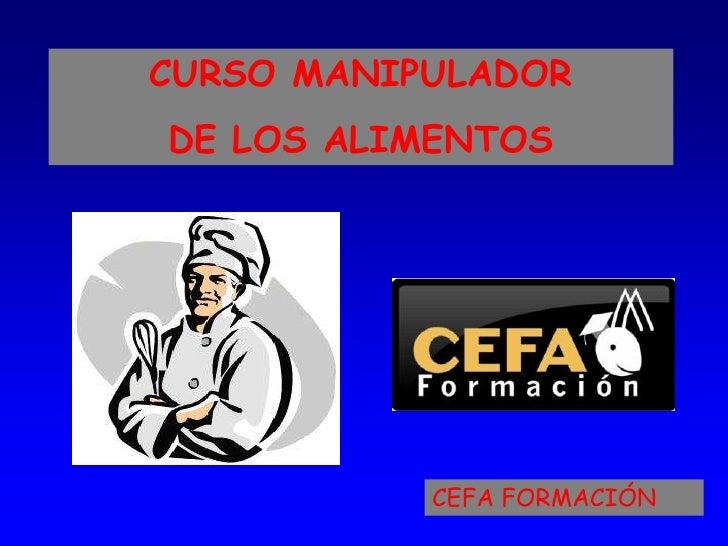 CURSO MANIPULADORDE LOS ALIMENTOS           CEFA FORMACIÓN