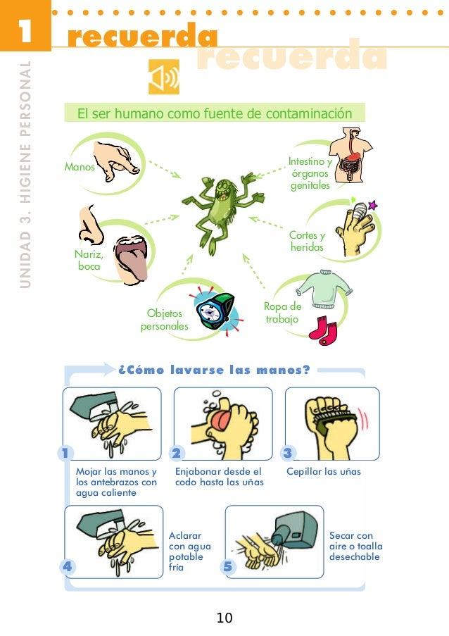 Manipulador de alimentos - Fuentes de contaminacion de los alimentos ...