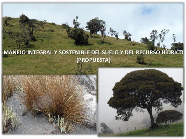 MANEJO INTEGRAL Y SOSTENIBLE DEL SUELO Y DEL RECURSO HÍDRICO (PROPUESTA)