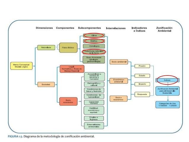 SISTEMA DE INDICADORES Datos analizados Indicadores Índices Datos primarios