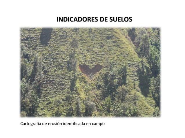 El grado de fragilidad de los suelos para el área estudiada es crítico; es por ello que esta interpretación determina las ...