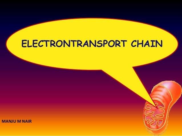 ELECTRONTRANSPORT CHAIN MANJU M NAIR
