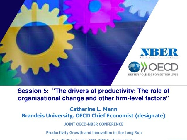 "Session 5: ""The drivers of productivity: The role of  organisational change and other firm-level factors""  Catherine L. Ma..."