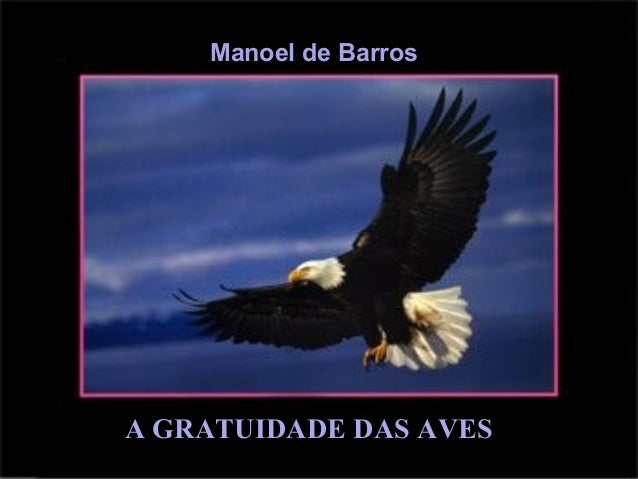 Manoel de Barros A GRATUIDADE DAS AVES