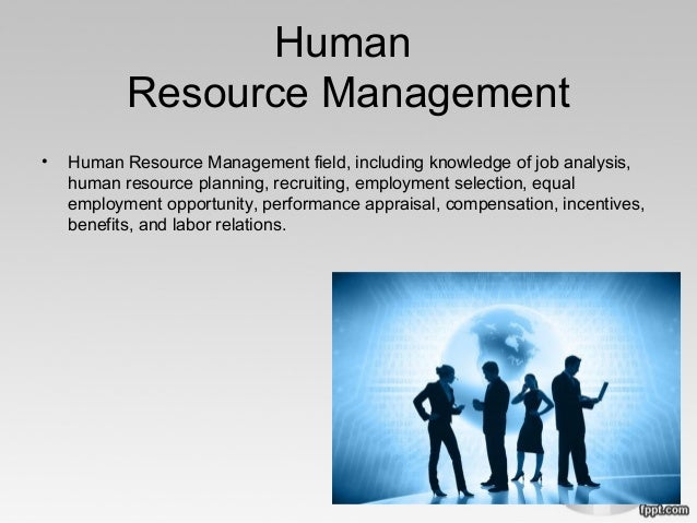 human resource plan in hilton hotel Research and practice in human resource management is an practices within a long-range plan for development the hotel industry is perhaps the least.
