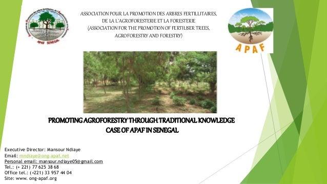 PROMOTINGAGROFORESTRYTHROUGHTRADITIONAL KNOWLEDGE CASEOF APAFIN SENEGAL ASSOCIATION POUR LA PROMOTION DES ARBRES FERTILLIT...