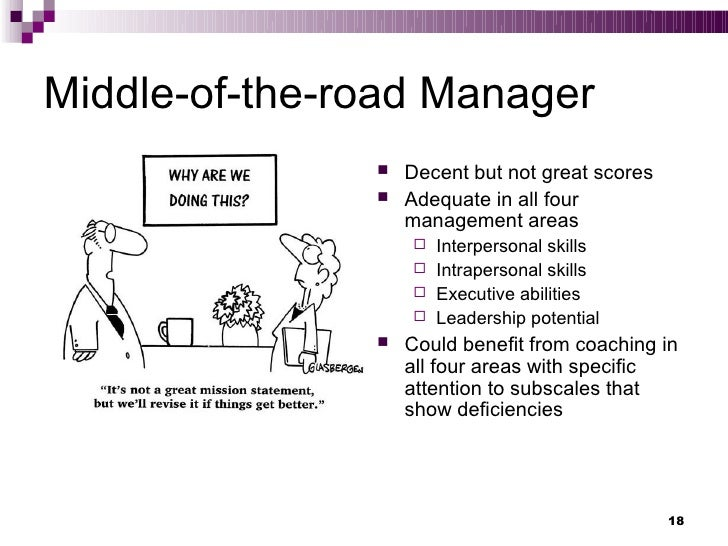 Management Style and Skills Test
