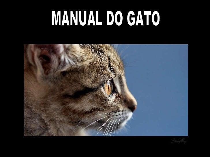 MANUAL DO GATO
