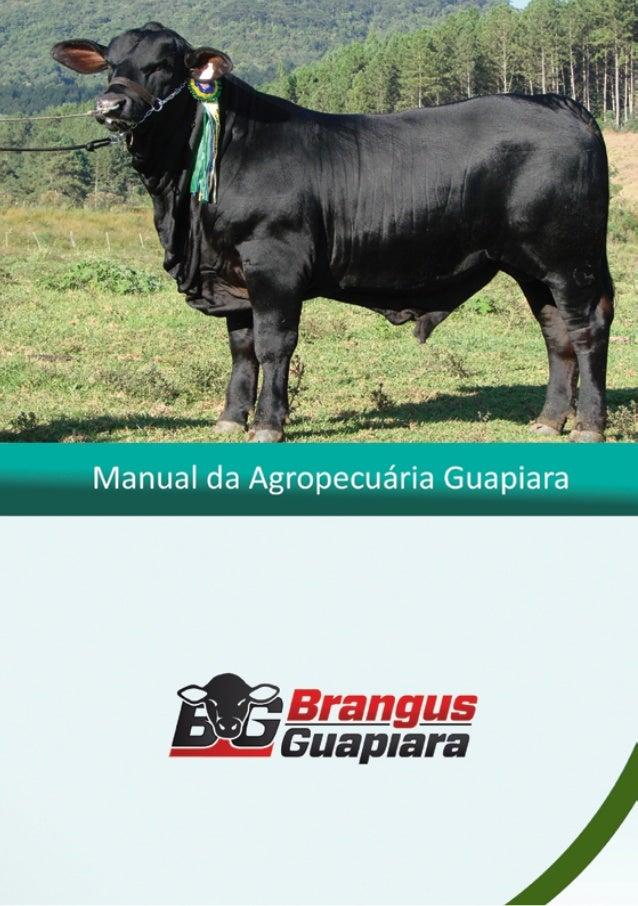 Manual de Produção Pecuária