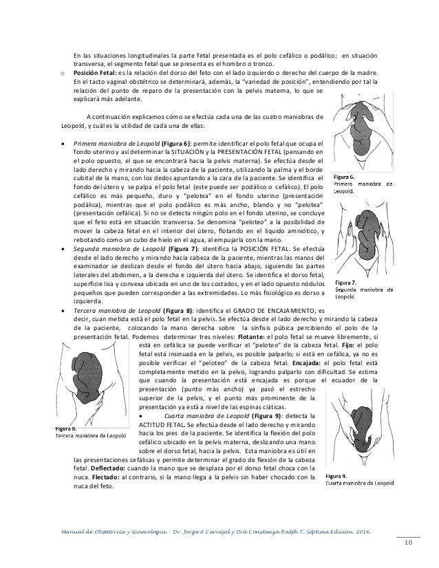 Contemporáneo Anatomía Humana Y Manual De Laboratorio De Fisiología ...
