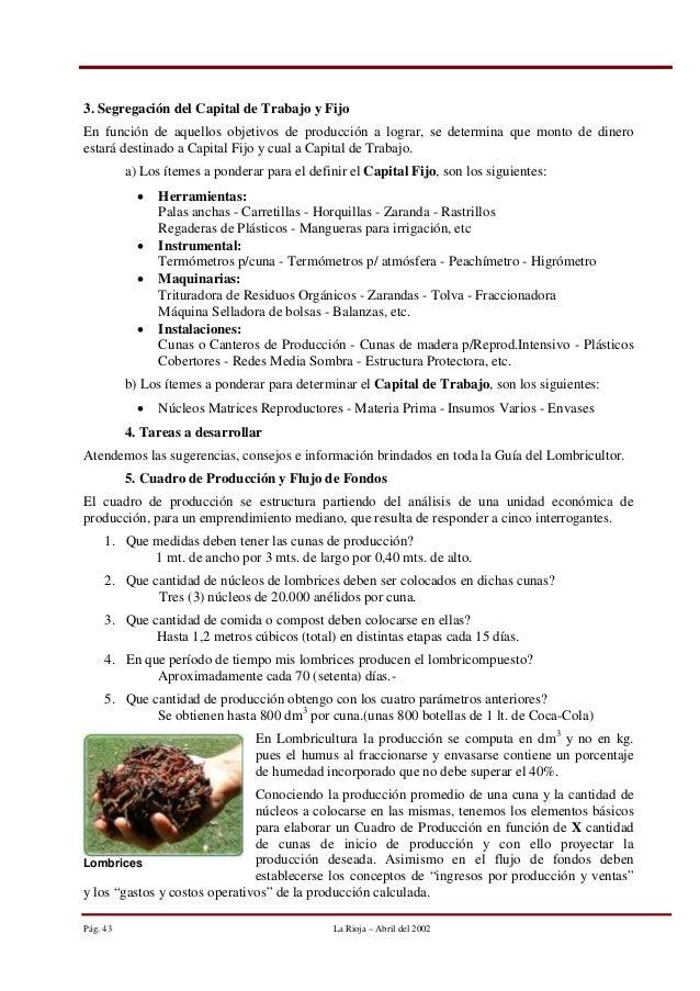 Famoso Anatomía Funciones De Lombrices Ilustración - Imágenes de ...