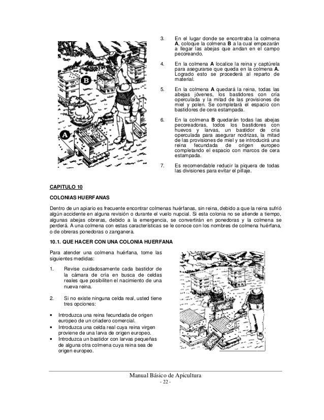 Manual basico apicola