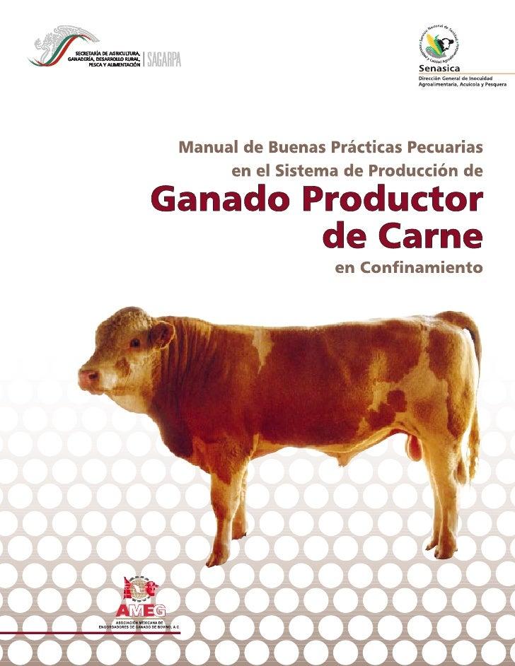 Manual de Buenas Prácticas Pecuarias        en el Sistema de Producción de    ganado bovinoproductor de carne             ...