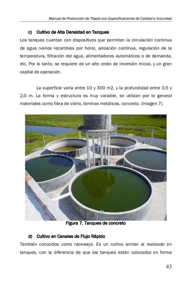 Manual de buenas practicas acuicolas for Engorda de tilapia en estanques rusticos