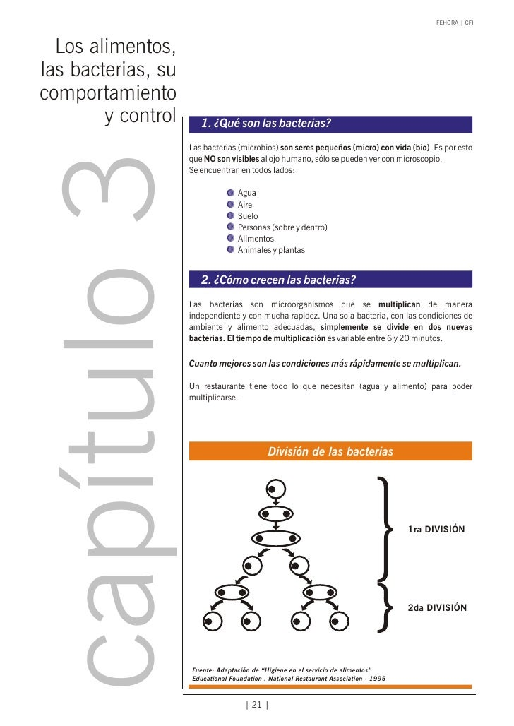 FEHGRA   CFI  Los alimentos,las bacterias, sucomportamiento        y control      1. ¿Qué son las bacterias?  capítulo 3  ...