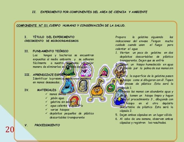Manual de experimentos para ciencias en primaria