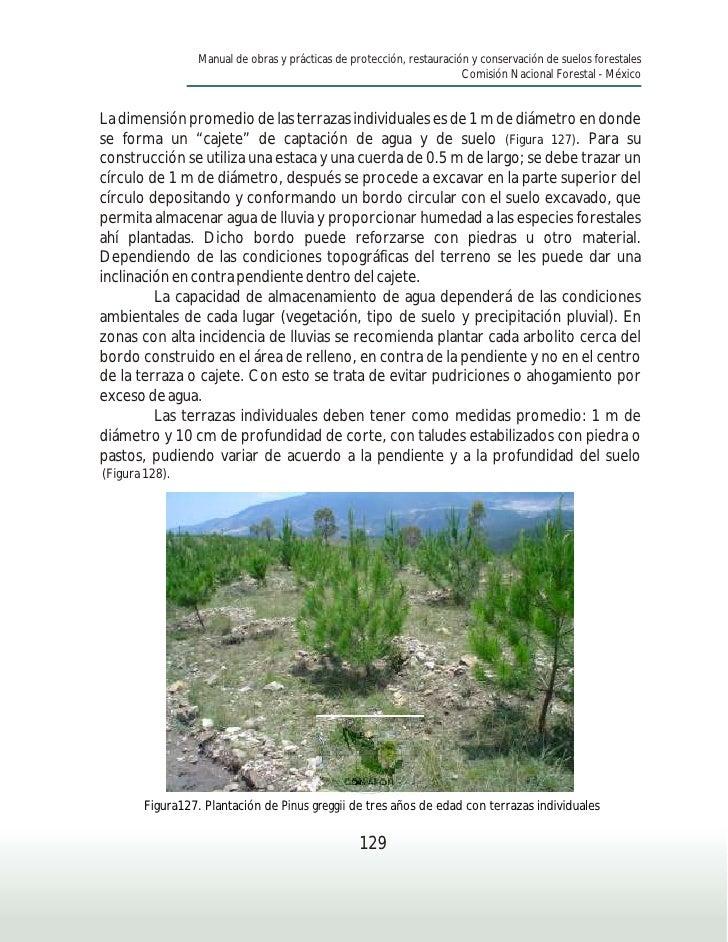 Manual conservacion suelos ii for Terrazas individuales